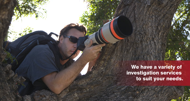 Investigator in a tree with zoom lens camera.